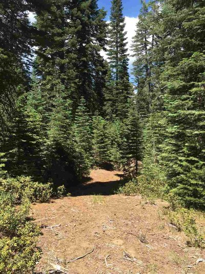 McCloud Residential Lots & Land For Sale: 4-K-7 Shasta Circle