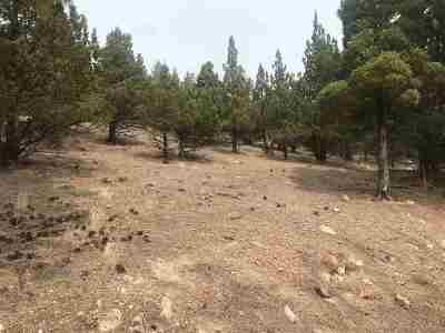 Weed Residential Lots & Land For Sale: Lot 94 Rainbow Dr