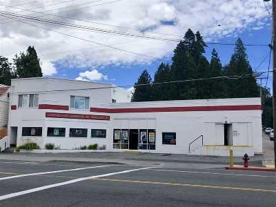 Mt Shasta Multi Family Home For Sale: 508 S Mt. Shasta Blvd.