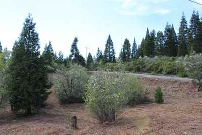 Mt Shasta Residential Lots & Land For Sale: Lot 16 Mathew Court