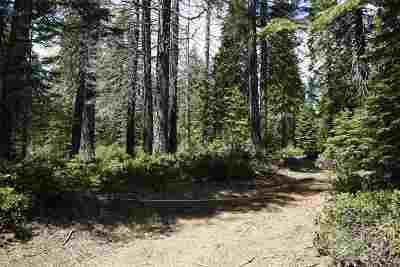 McCloud Residential Lots & Land For Sale: 8943 Shasta Circle & Adjacent Lot