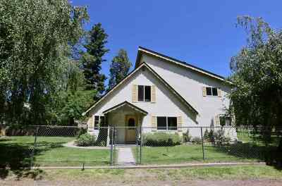 Mt Shasta Single Family Home For Sale: 635 Wisner Road
