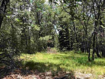 McCloud Residential Lots & Land For Sale: 1-D-1 & 2 Mt Shasta Drive