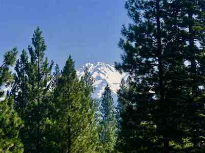 Mt Shasta Residential Lots & Land For Sale: Lot 18 Quail Hill Dr.