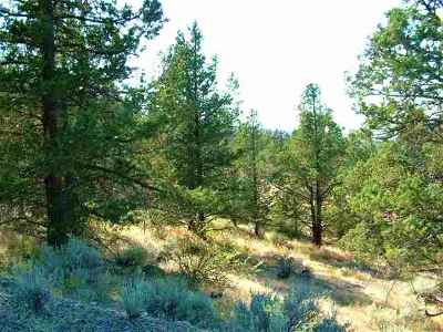 Residential Lots & Land For Sale: Lot 312 Mountain Wood Dr