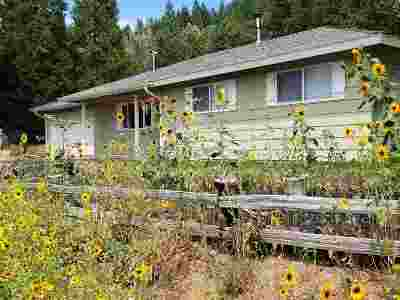 Mt Shasta Single Family Home For Sale: 712 Old McCloud