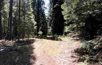 McCloud Residential Lots & Land For Sale: Unit 2 Blk A Lot 3 Upper Summit Way