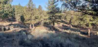 Weed Residential Lots & Land For Sale: Lot 315 Mountain Wood Dr.