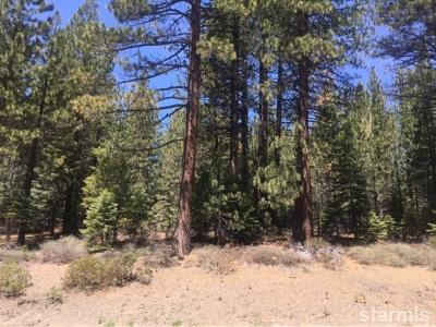 South Lake Tahoe Residential Lots & Land For Sale: 1427 Pioneer Trail