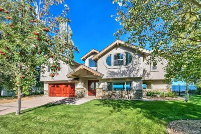 South Lake Tahoe Single Family Home For Sale: 319 Beach Drive