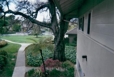 Condo/Townhouse For Sale: 5740 Encina Rd #6