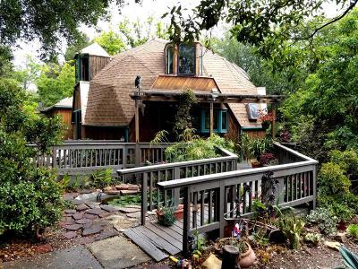 Santa Barbara County Single Family Home For Sale: 1450 N San Marcos Rd