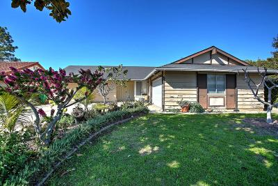 Single Family Home For Sale: 233 Placer Dr