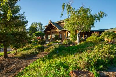 Sutter Single Family Home For Sale: 3995 West Butte Road #A