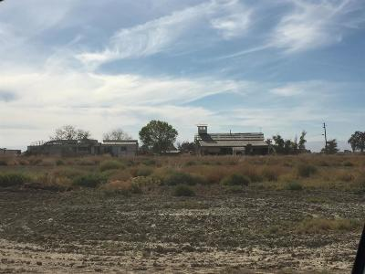 Colusa Commercial For Sale: 2949 Farinon Road