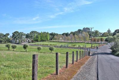 Marysville Single Family Home For Sale: 12816 Manna Lane