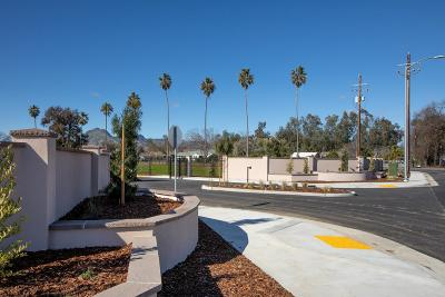 Sutter Residential Lots & Land For Sale: Javil Court #1