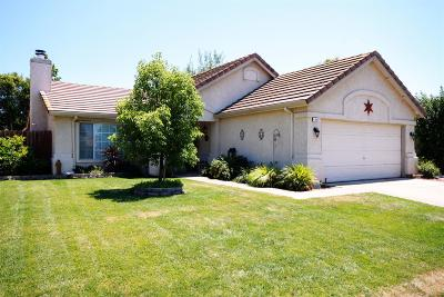 Marysville Single Family Home Pending Bring Backup: 1692 Twisted River Drive