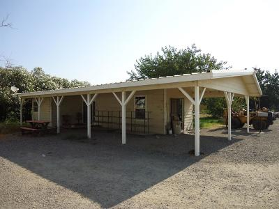 Colusa Commercial For Sale: 3165 Wilson Avenue