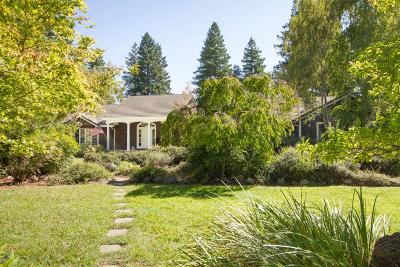 Yuba City Single Family Home Contingent: 1527 Atkinson Court