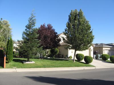 Live Oak Single Family Home For Sale: 9595 Waterman Avenue