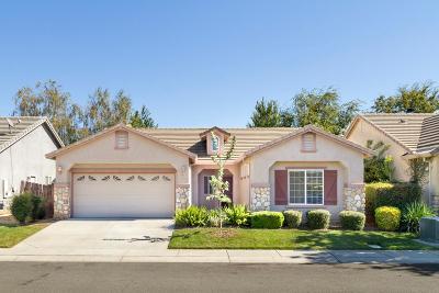 Yuba City Single Family Home For Sale: 1090 Randolph Drive