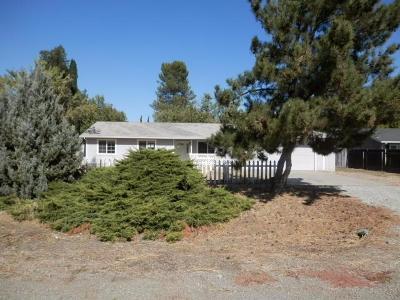 Sutter Single Family Home For Sale: 6835 Sutter Avenue