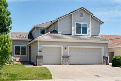 Gridley Single Family Home For Sale: 1960 Canvasback Court