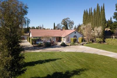 Yuba City Single Family Home For Sale: 320 Gabriel Avenue