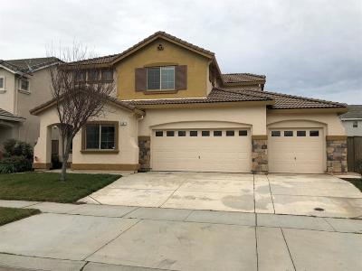 Marysville Single Family Home Pending Bring Backup: 5567 Freestone Drive