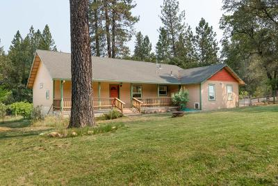 Oregon House, Dobbins Single Family Home For Sale: 10301 Maidu Trail