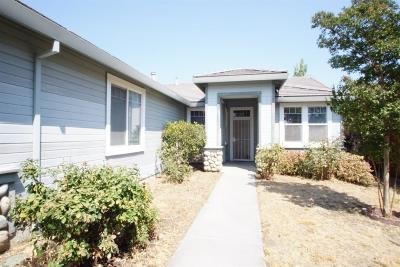 Single Family Home For Sale: 553 Butte View Drive