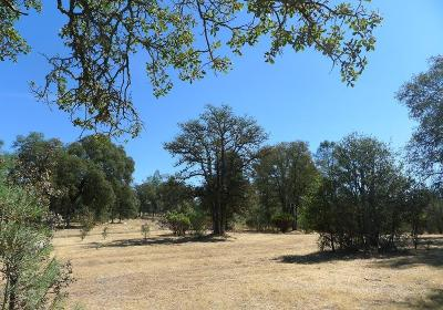 Oregon House, Dobbins Residential Lots & Land For Sale: 41 Bluebird Way