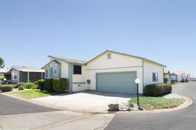 Yuba City Single Family Home Pending Bring Backup: 3120 Live Oak Boulevard #156