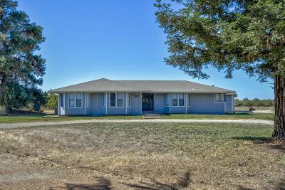 Yuba City Single Family Home For Sale: 5025 Railroad Avenue