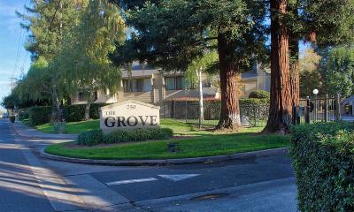 Yuba City Single Family Home For Sale: 750 Lincoln Road #28