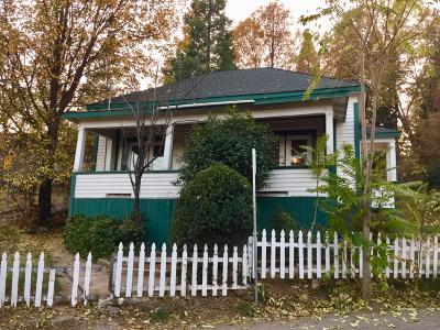 Grass Valley, Smartsville Single Family Home For Sale: 120 Eureka Street