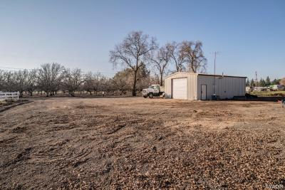 Sutter County Single Family Home For Sale: 10132 Luther Road