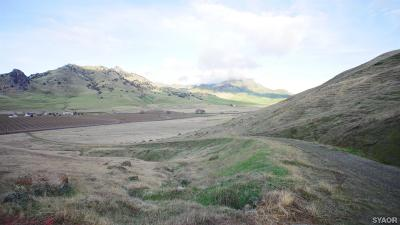Sutter Residential Lots & Land For Sale: West Butte Road
