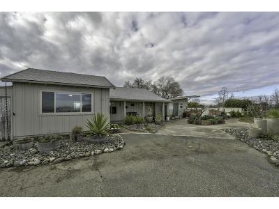 Colusa CA Single Family Home For Sale: $375,000