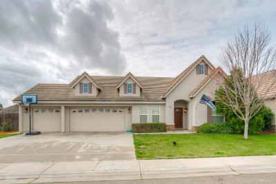 Colusa Single Family Home For Sale: 65 Meadow View Drive