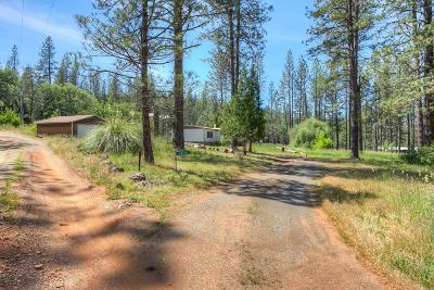 Yuba County Single Family Home For Sale: 9039 Seven Springs Trail