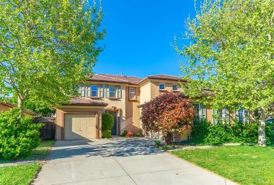 Placer County Single Family Home For Sale: 1065 Silverton Circle