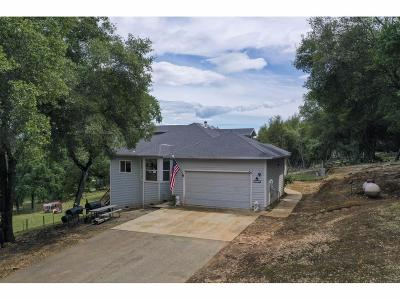 Marysville Single Family Home For Sale: 12359 Loma Rica Road