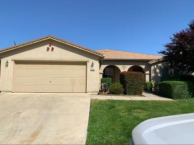 Sutter County Single Family Home For Sale: 9725 Collier Avenue