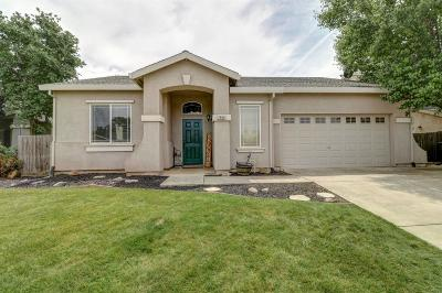 Sutter County Single Family Home For Sale: 2888 Epperson Way