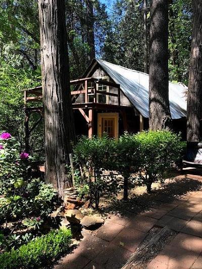 Yuba County Single Family Home For Sale: 18182 Old La Porte Road