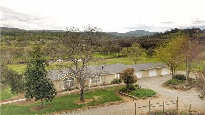 Yuba County Single Family Home For Sale: 12689 Lone Tree Way