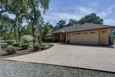 Butte County Single Family Home For Sale: 6250 Miners Ranch Road