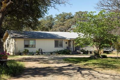 Butte County Single Family Home For Sale: 223 Prides Way